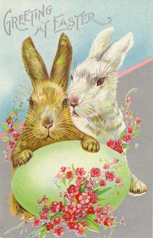 Creepy Vintage Easter Cards Little Owl Ski