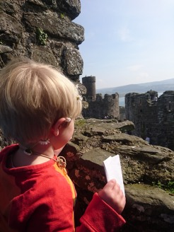 Dexter at Conway Castle